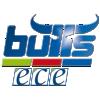 Kapfenberg Bulls