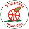 Gilboa Galil